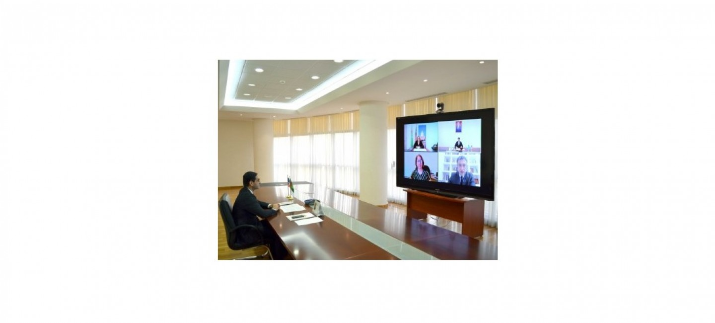 ONLINE MEETING WAS HELD WITH USAID REPRESENTATIVES
